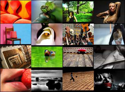 slickr.jpg